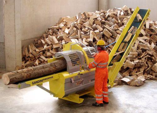 Segata e spaccata vale di pi agricoltura news for Vendita legna da ardere