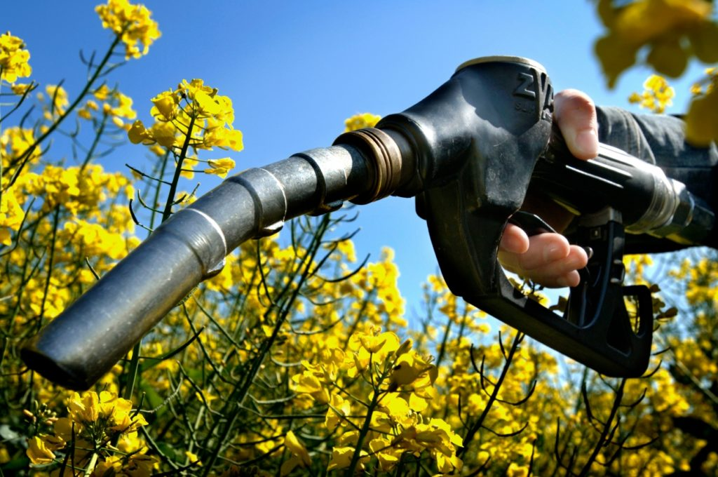 biodiesel01