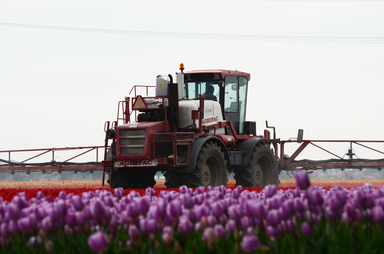 BKT_Agrimax_RT_855_Sprayer_Tulips